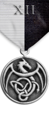 Map - Twelve Domains - Silver Medal Image